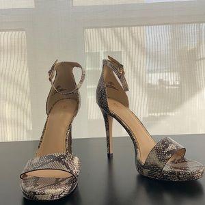Michael Shannon Snake skin heels